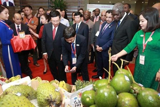 Diplomats, firms discuss trade among Vietnam, Africa, Middle East hinh anh 2