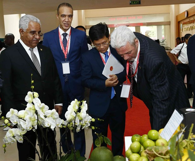 Workshop focuses on Vietnam's agricultural ties with Middle East, Africa hinh anh 1