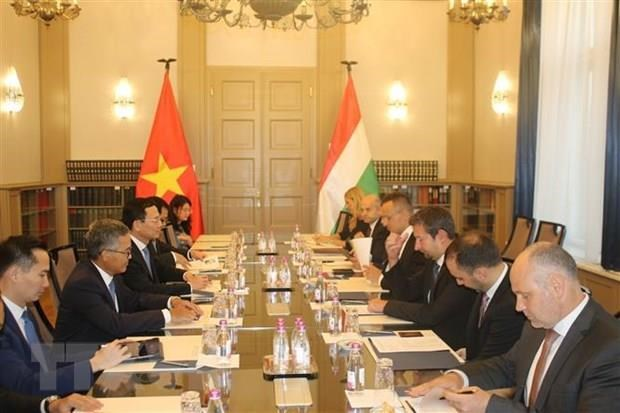 Vietnam looks to strengthen ICT cooperation with Hungary hinh anh 1