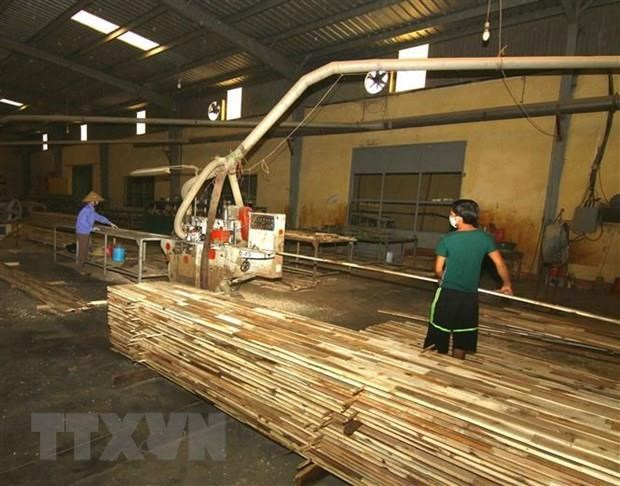Wood processing firms should embrace technologies: experts hinh anh 1