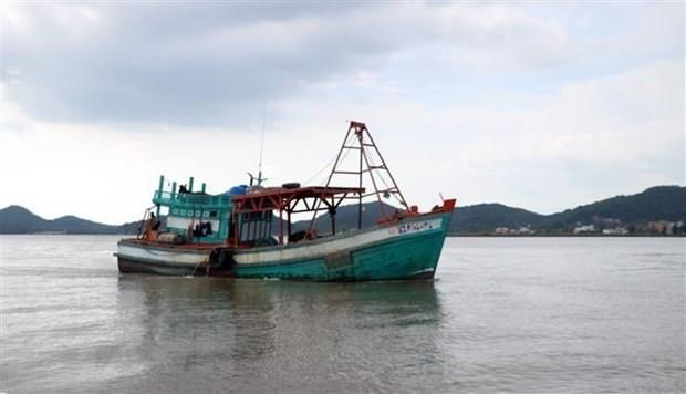 Defence Ministry actively engages in fighting IUU fishing hinh anh 1
