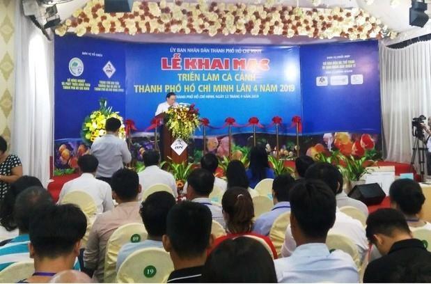 HCM City runs ornamental fish expo hinh anh 1