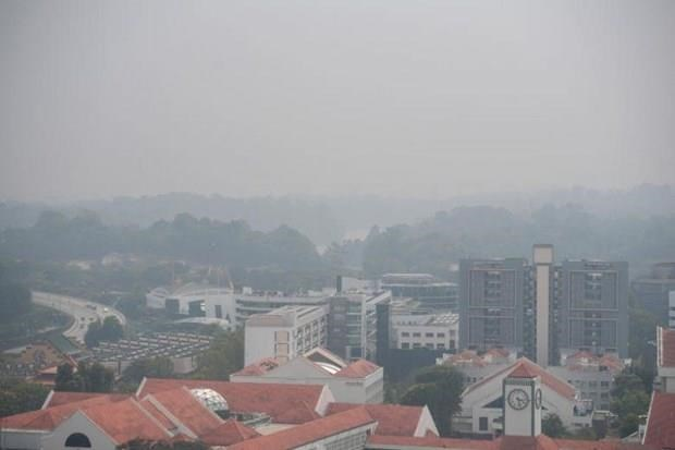 Singapore faces worst air quality in three years hinh anh 1