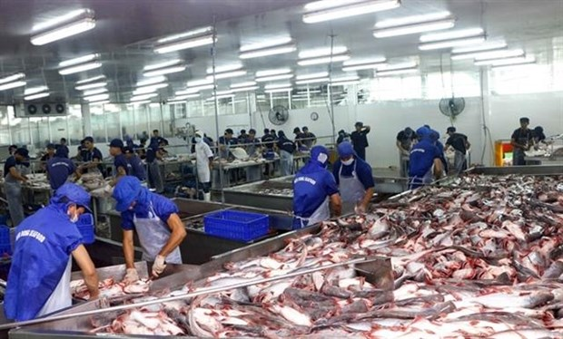 Tra fish companies see stock prices plummet hinh anh 1