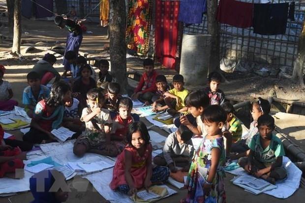 UN warns of violence against Rohingya Muslims in Myanmar hinh anh 1