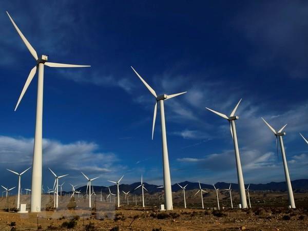 Vietnam develops renewable energy hinh anh 1