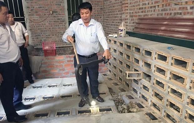 Vinh Phuc to develop Vinh Son into snake farming-tourism site hinh anh 1