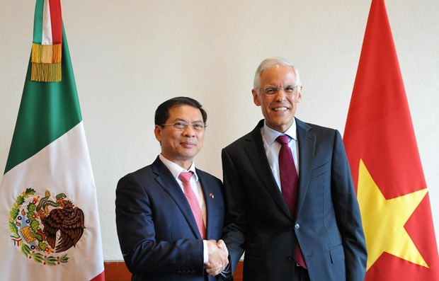 Vietnam, Mexico hold fifth political consultation hinh anh 1