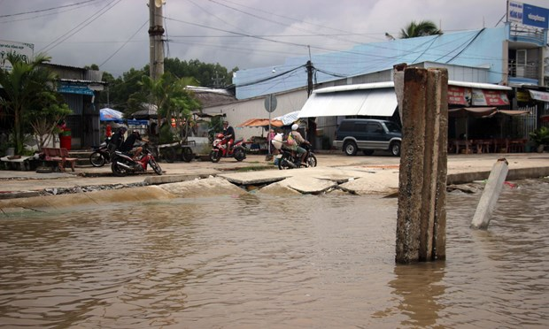 Erosion pushes Ca Mau's eastern coast to emergency status hinh anh 1