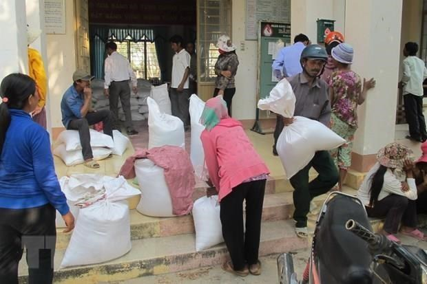 Thanh Hoa to provide more than 1,600 tonnes of rice for needy students hinh anh 1