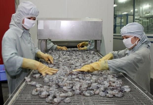 Shrimp export falls 8.1 percent in eight months hinh anh 1