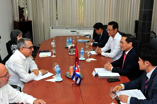 Vietnam, Cuba hold fifth political consultation hinh anh 1