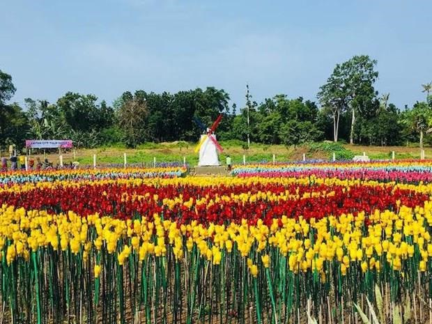 Philippine city turns plastic trash into flowers hinh anh 1