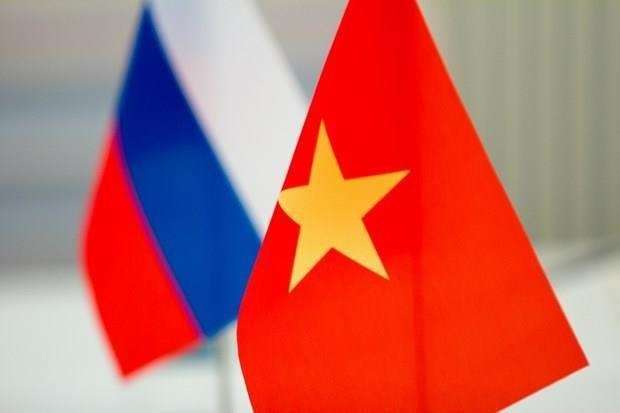 Scholar: Vietnam, Russia build exemplary relationship hinh anh 1