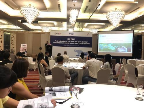Sustainable business capacity needed: workshop hinh anh 1