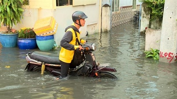 River tides reach flood warning level 3 in HCM City, Mekong Delta hinh anh 1