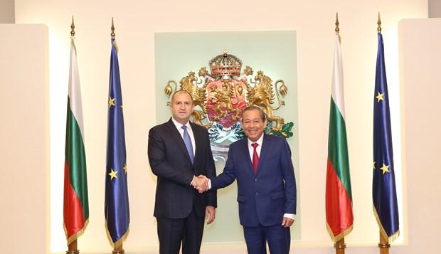 Deputy PM Truong Hoa Binh meets Bulgarian President hinh anh 1
