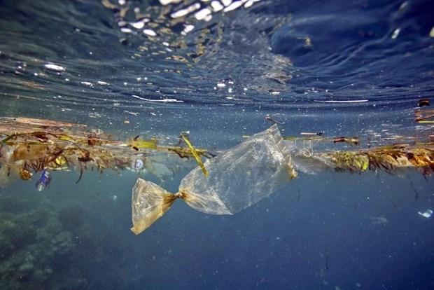 Thailand generates less marine debris hinh anh 1