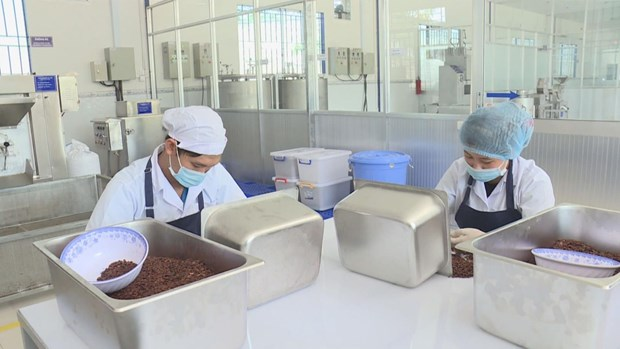 Tra Vinh lures 50 projects in nine months hinh anh 1