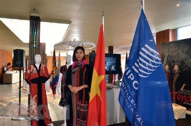 Vietnam silk, brocade exhibition underway in Geneva hinh anh 1