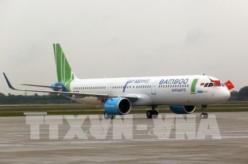 Bamboo Airways to launch regular flights to Seoul hinh anh 1