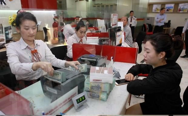 Credit institutions expect rosy prospects for 2019 hinh anh 1