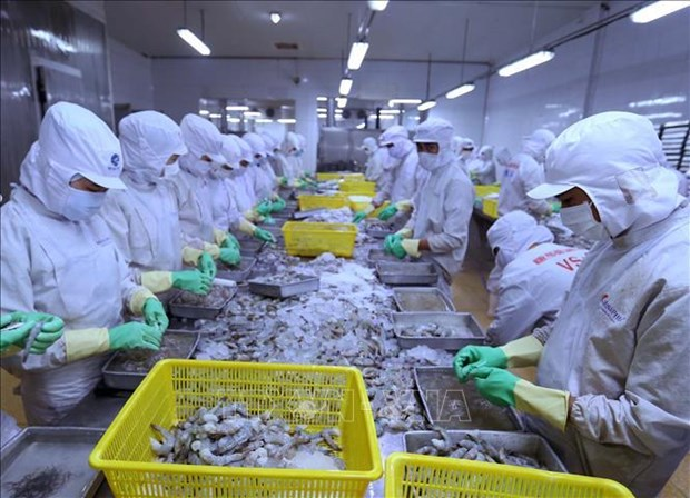Vietnam continues to enjoy trade surplus with Israel hinh anh 1