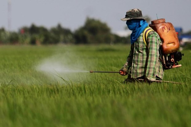 Thailand bans three toxic farm chemicals from December hinh anh 1