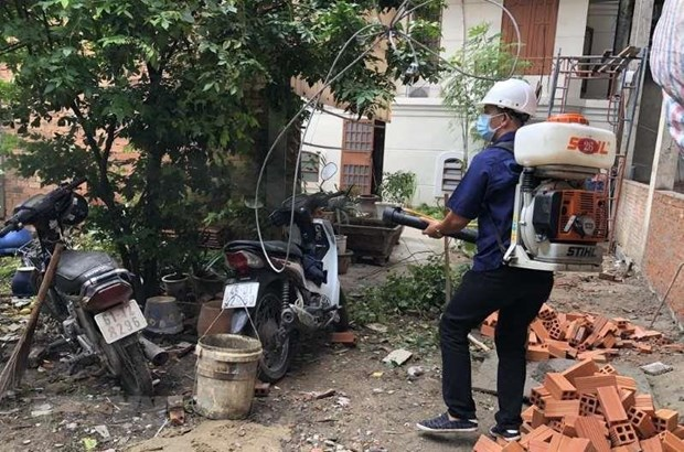 HCM City records nine deaths from dengue fever hinh anh 1