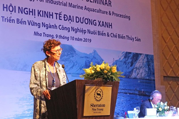 Vietnam, Norway share experience in marine farming development hinh anh 1