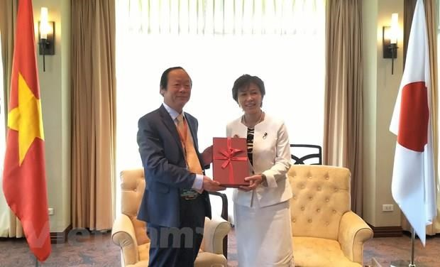 Vietnam calls for Japanese support in waste treatment hinh anh 1