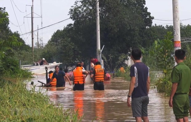 Vietnam, Japan share measures to cope with flash flood, landslides hinh anh 1