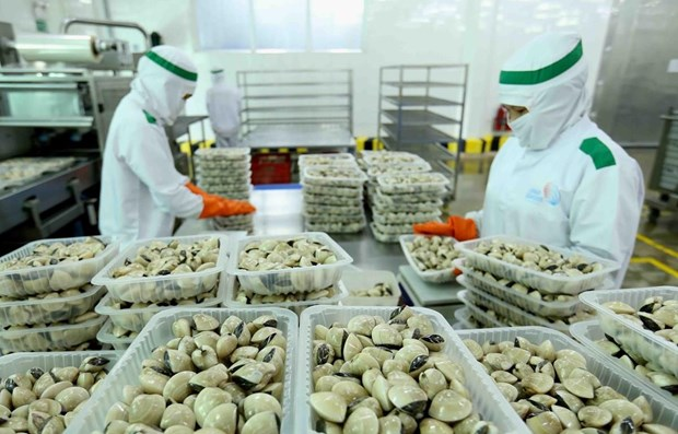 Three more kinds of Vietnamese seafood exported to China hinh anh 1
