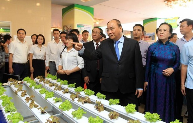 PM urges Hai Phong to take lead in agriculture modernisation hinh anh 1