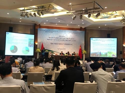 Vietnam, China cooperate in tea, coffee production hinh anh 1
