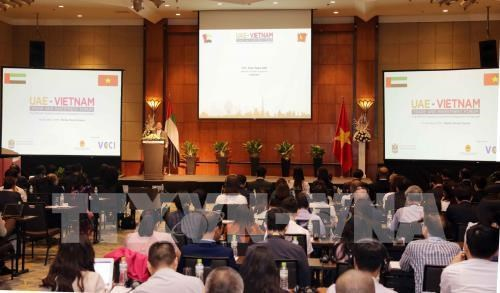 Vietnam, UAE seek to expand trade, investment links hinh anh 1