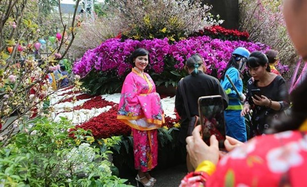 5th Hanoi cherry blossom festival to be held next March hinh anh 1