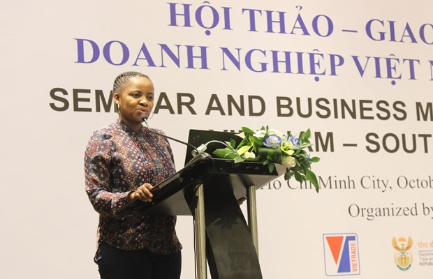 South African businesses seek partnership in Vietnam hinh anh 1