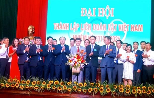 Vietnam wrestling federation president named hinh anh 1