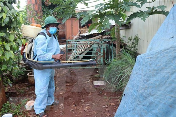 Hanoi strives to control dengue fever by November hinh anh 1
