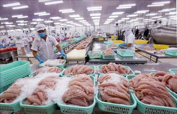 US cuts antidumping duties on Vietnamese tra fish fillets hinh anh 1