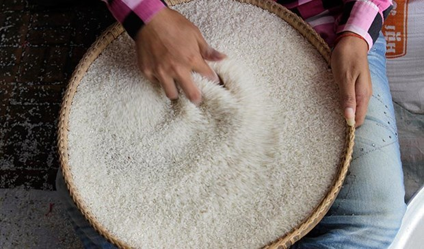 China to import more rice from Cambodia hinh anh 1
