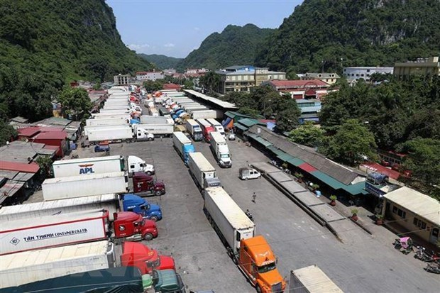 Customs to work extra hours to clear truck jam at border hinh anh 1