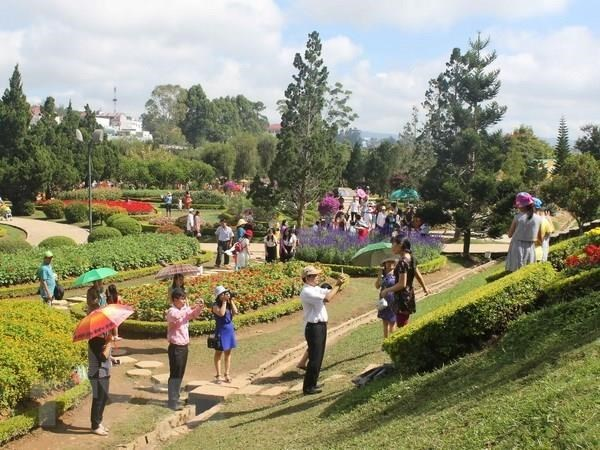 Eighth Da Lat Flower Festival to take place in December hinh anh 1