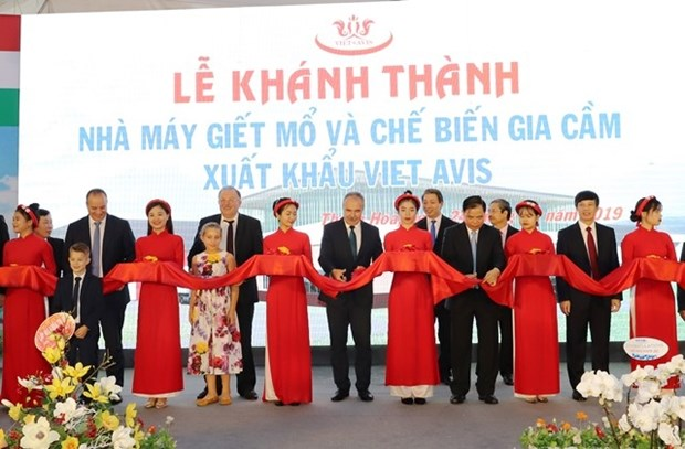 Poultry processing plant inaugurated in Thanh Hoa hinh anh 1