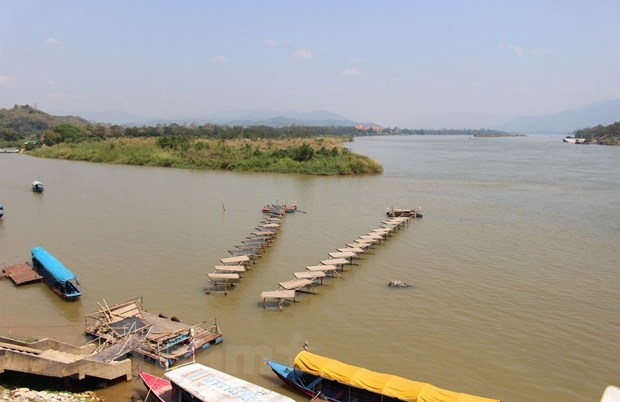 Half of Mekong Delta to be lost under sea level: research hinh anh 1