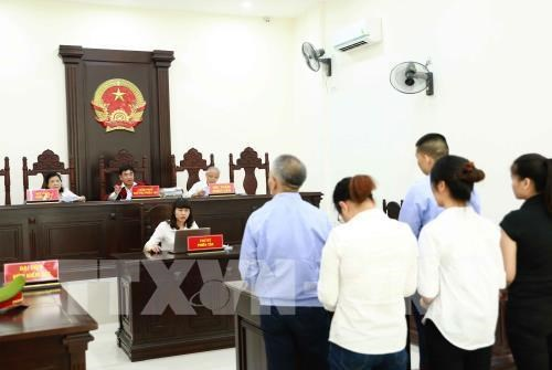 Five jailed for involving in illegal surrogacy ring hinh anh 1
