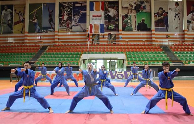 Egypt hosts Viet Vo Dao – Vovinam Championship hinh anh 1