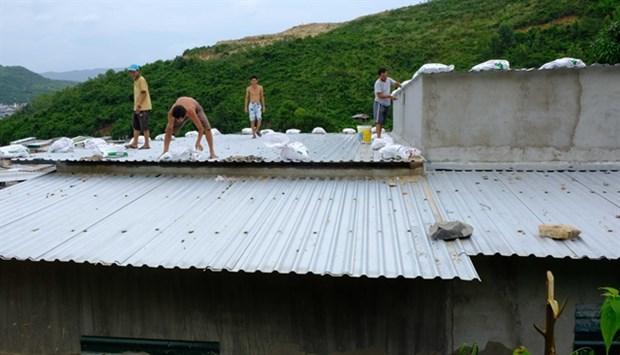 Storm Matmo to make landfall from Quang Ngai to Khanh Hoa hinh anh 1
