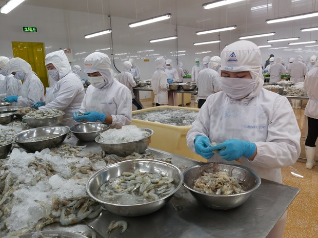 Domestic firms outpace foreign invested peers in exports growth hinh anh 1